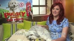 Pudsey The Dog: The Movie - Ashleigh Butler and Pudsey interview