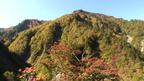 日本の紅葉絶景 石川県 白山スーパー林道 ~ 日本全国 紅葉狩り ~