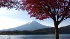 日本の紅葉絶景 山梨県/静岡県 富士山と紅葉 ~ 日本全国 紅葉狩り ~