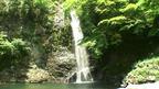 新緑の滝と渓谷 大阪府 滝百選 箕面の滝 ~ 癒しの滝・渓谷 特集