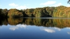 日本の紅葉絶景 青森県 白神山地 十二湖 ~ 日本全国 紅葉狩り ~