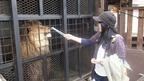 「ノースサファリサッポロ」で動物たちに会ってきた!@北海道札幌市 North Safari Sapporo Zoo, Hokkaido