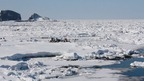 ウトロに接岸する流氷たち @北海道斜里町(知床) Shiretoko Utoro Driftice, Hokkaido