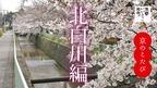京のこたび 北白川編