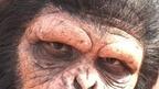DVD&ブルーレイ『猿の惑星:新世紀』面白PR映像