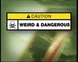 Weird & Dangerous Episode 24
